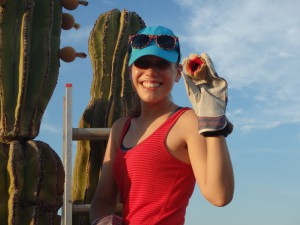 Jackie Aliperti studying bat-fruit interactions in Baja in July 2014